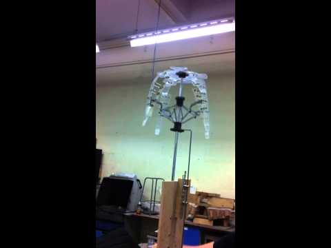 Jellyfish test - rhombic drive first movement.