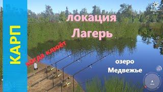 Русская рыбалка 4 - озеро Медвежье - Карп когда рыба клюет