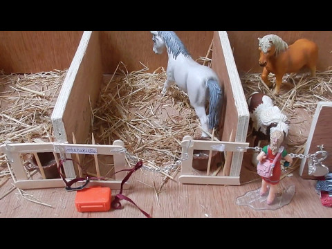 [Visite] Le Centre Equestre Schleich de la Tête d'Or