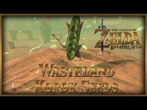 Zelda Breath of the Wild • Korok Seeds • Wasteland