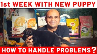 1st Week with New Puppy Dog Breed at Home |Handle Initial Problems | Live EXample | Baadal Bhandaari