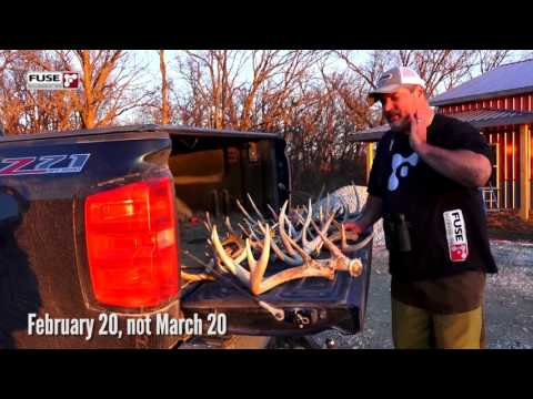 Midwest Whitetail   Shed Hunting