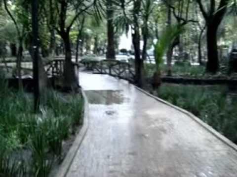 Parque Condesa Park Mexico City