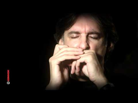 Howard Levy - HOHNER Masters of the Harmonica