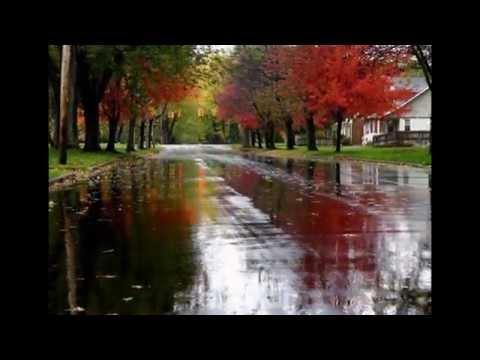 Дождливая осень.