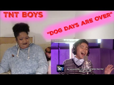 *DAY 15* -TNT Boys-Dog Days are Over Reaction