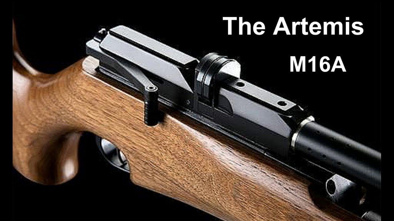 The Artemis M16A in field mini review