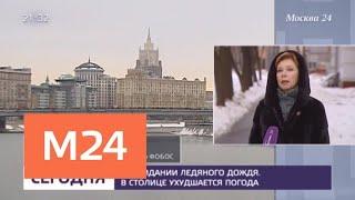 Желтый уровень погодной опасности в Москве продлили еще на сутки - Москва 24