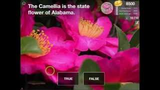 Learn about Alabama: Geography of the United States of America