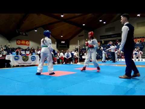 Taekwondo Dublin Open Championship 2017