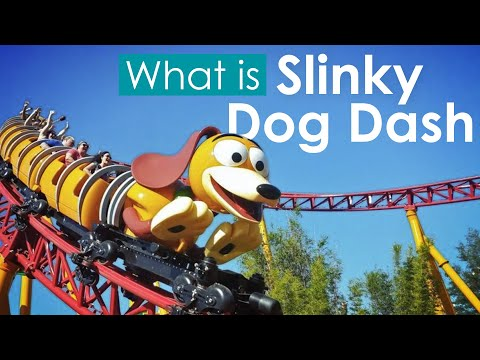 What is: Slinky Dog Dash - Disney's Hollywood Studios