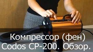 Компрессор (фен) для собак Codos CP-200. Видеообзор