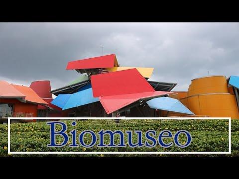 Recorrido por el Biomuseo