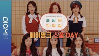 Apink 6th PANDA FANMEETING  VCR.2 (소풍 DAY 편)