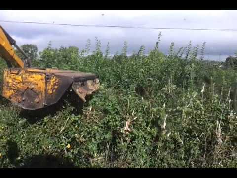 Hedge cutting 2013 ArboCut 2000