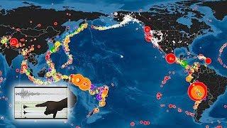¿Qué está pasando con el Anillo de Fuego del Pacífico en 2019?