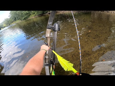 RECURVE BOWFISHING In Shallow Water INCREDIBLE INSTINCTIVE SHOTS! - 2019 Pennsylvania Mahoning Creek