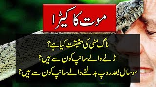 Snake Documentary In Urdu - Mysterious Animals - Purisrar Dunya