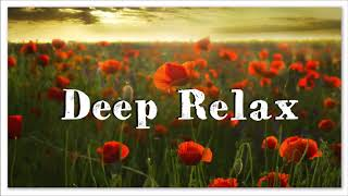 Deep Relax Ambient Chill Music | Instant Relief Instrumental Music