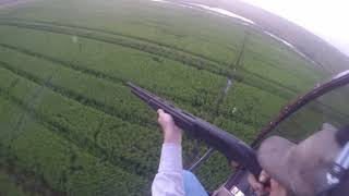 NOT FOR SENSITIVE VIEWERS. PEST CONTROL.. Kubecka Flying Service Helicopter Hog Hunting: Wesley'