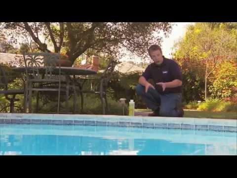 수영장 관리: 조류 제거 방법