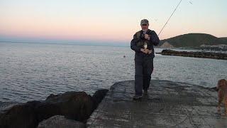 Рыбалка Джубга отводной поводок ласкирь 02 10 2019