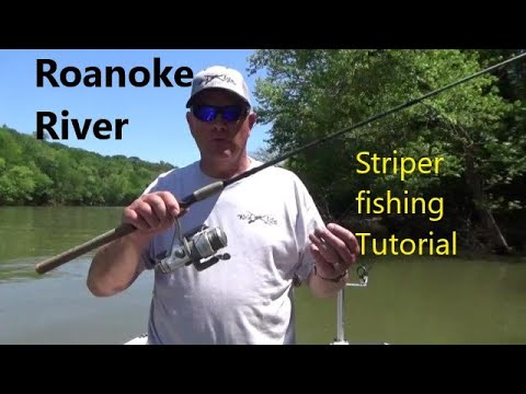 Roanoke River Striper Fishng/ TUTORIAL/ 2019/ How To Fish For Stripers/catch More Stripers