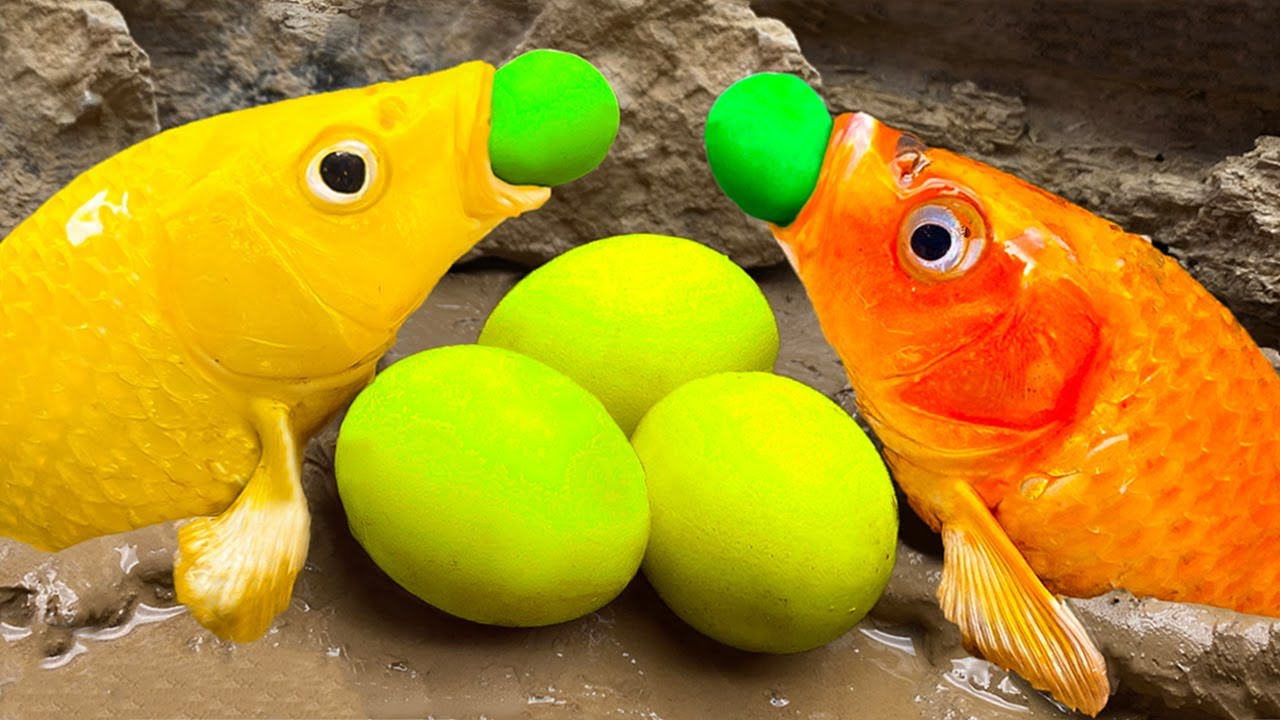Stop Motion ASMR - Yellow Lemon Stand Fish, Squit Game, Koi Egg in the Cave Trap & Unusual Cooking!