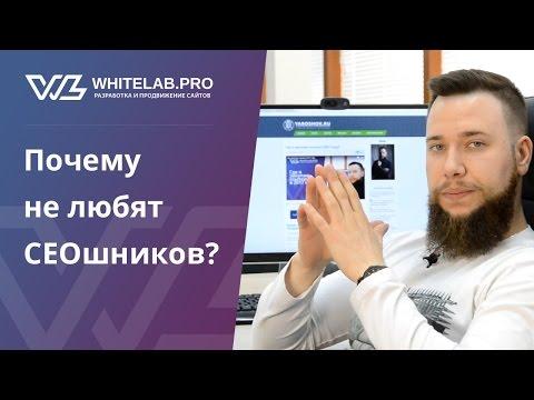 видео: Почему не любят СЕОшников? (18+)