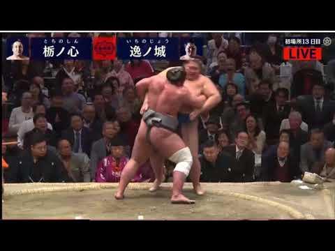 Hatsu Basho 2018, Day 13, Tochinoshin vs Ichinojo