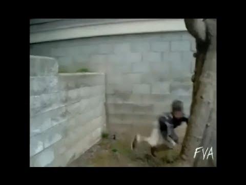 VIDEOS GRACIOSOS , CAIDAS , GOLPES 2 - LOQUENDO 2014
