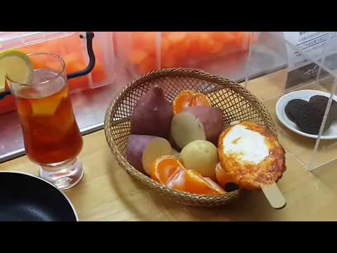 Japan Winter Trip 2017 | Kanazawa - Shirakawa Go - Tokyo - Osaka -Kyoto