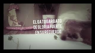 En recuerdo de Gloria Fuertes y agradecimiento a su trabajo nos hiciste con tus poemas una infancia muy agradable y feliz .