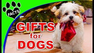 Best Christmas Presents for Dogs 2017- Animal Facts