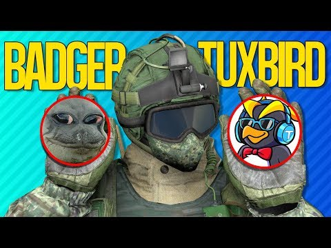 THE BADGER PENGUIN SHOWDOWN | Rainbow Six Siege