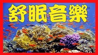 30分鐘海底世界舒眠音樂: 要放鬆一定要聽的輕音樂~~30 min Relaxing Piano Music!