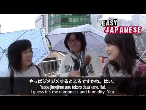 Easy Japanese 2