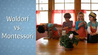 Waldorf vs. Montessori Education: What's the Difference?