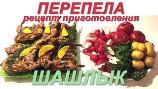 Перепела - рецепт приготовления. Шашлык из перепелов
