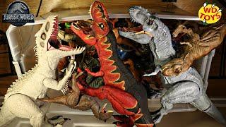 Huge Box Jurassic World Dinosaur Toys Colossal Indominus Rex, T-Rex Dinosaur Toys #withme WD Toys