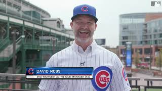 David Ross on Managing the Cubs
