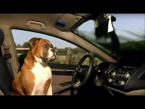 Lincoln Commercial 2 The Boxer S Back Youtube