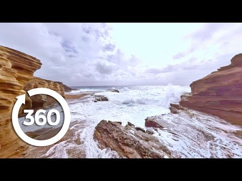 🌴Take A Tropical Break And Explore The Hawaiian Islands in Virtual Reality! (360 Video)