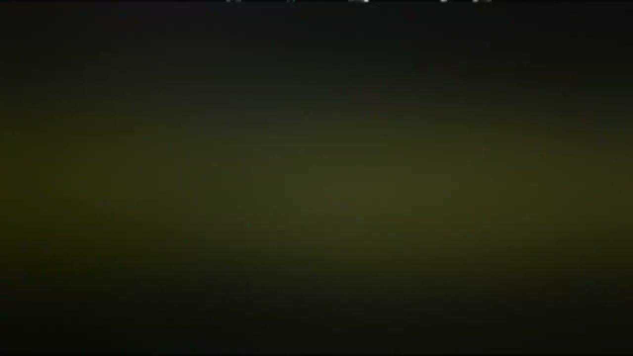 Deretan Kecantikan Ikan Cupang Avatar Black Vampire Youtube