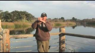 Rattle trap trick for lay down and standing timber, tips & tricks by central coast bass