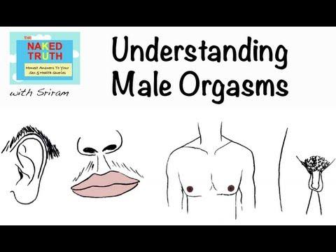 Erotic bootie shaking videos