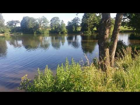 Tippings Arms AS Horns Dam June 2018