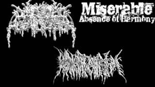 Miserable Absence Of Harmony - 11 Traxxx