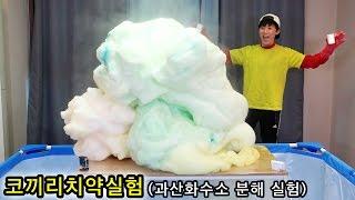[허팝] 코끼리치약실험 : 과산화수소 분해 실험 대박!!! (Elephant's Toothpaste : hydrogen peroxide experiment) thumbnail