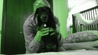 Attack Of The Zombie Wiener Dog Sadie By Rickkennedyfilms Epic Funny Cute Dog Youtube Video